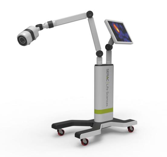 Prototype of Hybrid Gamma Camera